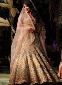 Chitrangda Stunning Bridal Lehenga